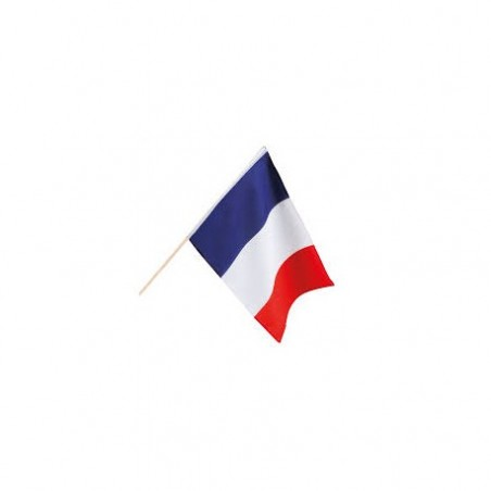 French flag on stem