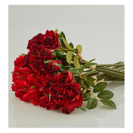 Red roses for rent